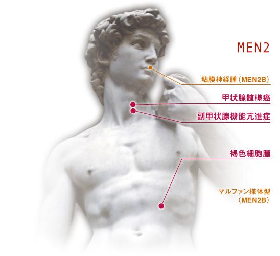 men 多発性内分泌腫瘍症1型 2型 について men net org